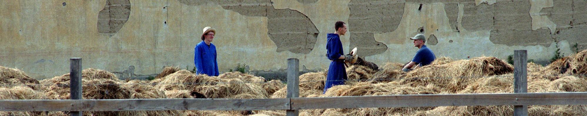 Schiere monniken en grijze vrouwen